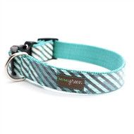 Agave Laminated Cotton Dog Collars and Leashes