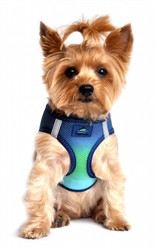 Northern Lights Ombre American River Choke Free Dog Harness