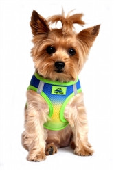 Cobalt Blue Sport Ombre American River Choke Free Dog Harness