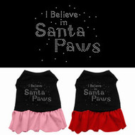 I Believe In Santa Paws Dog Dress