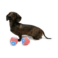 "Star & Stripes 4th of July Dog Ball Toy 3"" Pack of 2 by Midlee (Small)"
