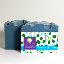 Neem + Tea Tree Soap