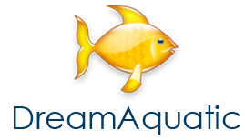 DreamAquatic.com