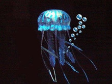 Eshopps Glowing Effect Floating Jellyfish Ornament Blue 4in