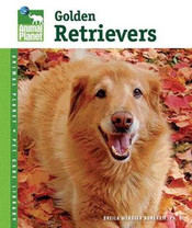 Golden Retrievers Book