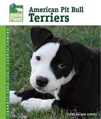 Pit Bull Terrier Book