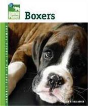Tfh/Nylabone DTFAP010 Animal Planet Boxers