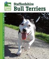 Bull Terriers Book