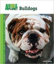 Bulldogs (Animal Planet Pet Care Library)
