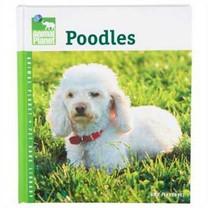 Tfh/Nylabone DTFAP043 Animal Planet Poodles