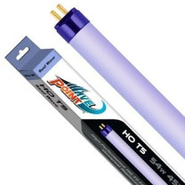 Wave Point High Output Reef Wave Super Violet O3 Actinic 420 T5 Lamp 54W 45in