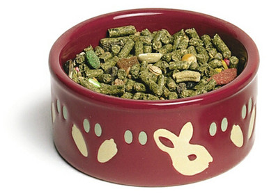 Super Pet Paw-Print Petware Bunny Bowl