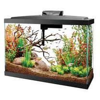 13 LED Widescreen Aquarium Kit