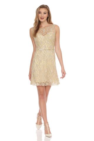 Lace Beaded A-line Dress