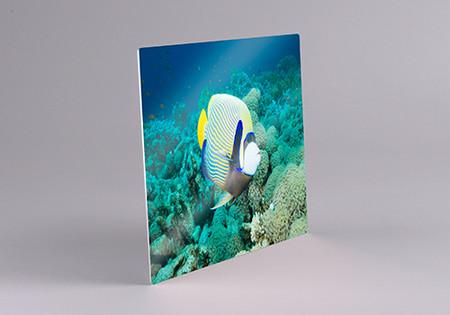 Chromaluxe® Gloss White Sublimation Aluminum Photo Panel