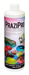Hikari PraziPro Parasite Treatment 16oz