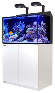Red Sea MAX E-Series 260 Rimless Aquarium 69 Gallons with 2 ReefLED 90 Light System