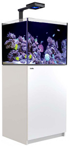 Red Sea Reefer Deluxe Concept 170 Aquarium (White) 34 Gallons with ReefLED 90 Light Fixtures