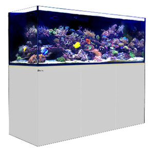 Red Sea Reefer 750 XXL 200 Gallon Rimless Aquarium - White