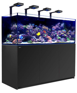 Red Sea Reefer Deluxe XXL 750 Aquarium (Black) 200 Gallons with 4 x ReefLED 90 Light Fixtures