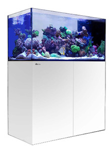 Red Sea Reefer 500 Peninsula 105 Gallon Rimless Aquarium - White