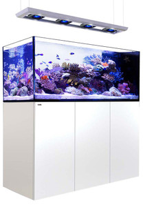 Red Sea Reefer Deluxe Peninsula 650 Aquarium (White) 140 Gallons with 4 x ReefLED 90 Light Fixtures