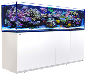Red Sea Reefer 3XL 900 Rimless Aquarium 240 Gallon (White)