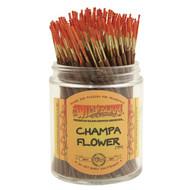 Wildberry Shorties - Champa Flower