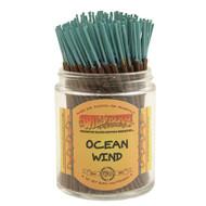 Wildberry Shorties - Ocean Wind