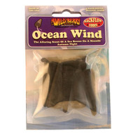 Wildberry Packaged Backflow Cones - Ocean Wind