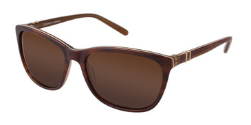 Brown Brendel 916017 Sunglasses.