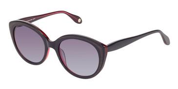 Black Mahogany Fysh 2013 Sunglasses.
