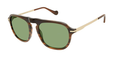 C01 Brown Horn/Gold Canali 219 Sunglasses.