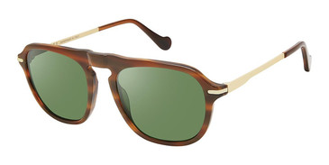 C01 Brown Horn/Gold Canali 219A Alternative Fit Sunglasses.
