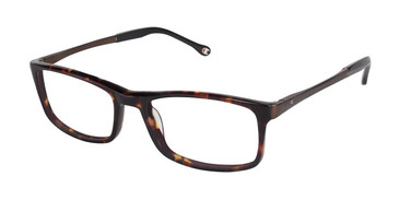 Brown Tort c02 Champion 4004 Extended Size Eyeglasses.