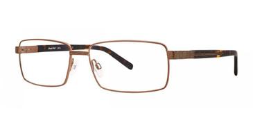 Gold Comfort Flex Larry Eyeglasses.