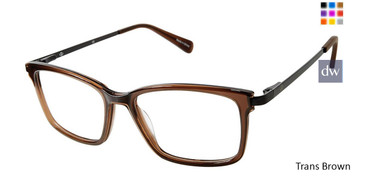 Trans Brown Sperry BRIXHAM Eyeglasses.