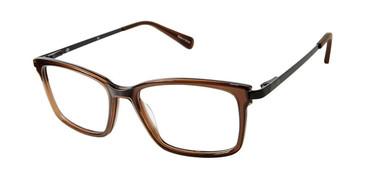 Trans Brown Sperry BRIXHAM Eyeglasses.