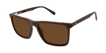 Brown Horn Sperry SOUTHPORT Polarized Sunglasses.