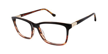 Black Buffalo BW010 Eyeglasses.