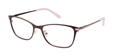 Brown/Rose Gold Ted Baker B239 Eyeglasses.