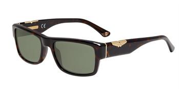 Tortoise(0722) Police SPL967 Sunglasses.