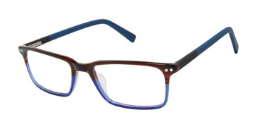 Brown Blue Ted Baker B972 Eyeglasses.