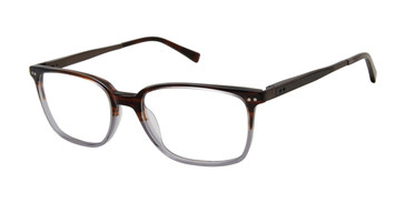 Tortoise/Grey Ted Baker TM003 Eyeglasses.