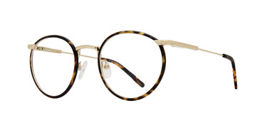 Oilve Gold Brooklyn Heights Coney Eyeglasses