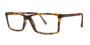 Tortoise Vivid Collection 243 Eyeglasses