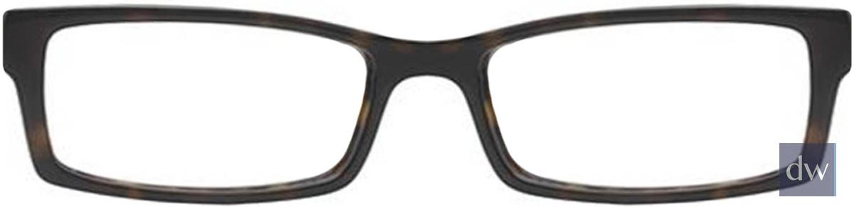 Tortoise Wired 6019 Eyeglasses