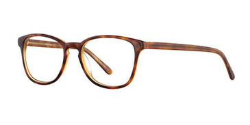 Brown Demi Elan 3014 Eyeglasses.