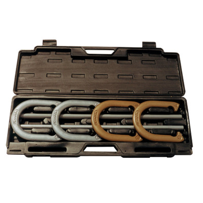 Champion Sports Deluxe Steel Horseshoe Set with Case