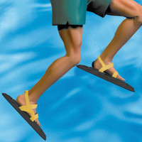 Water Walkers - Swim Fitness Fins